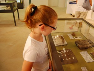 musees-histoire-naturelle