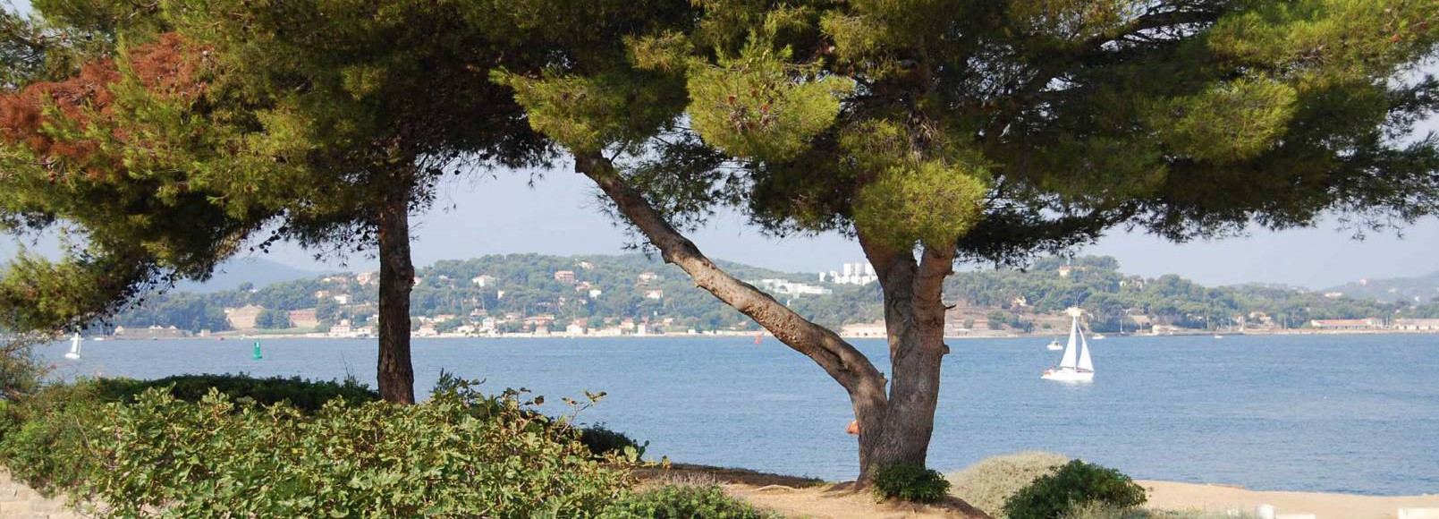 Official Toulon Tourist Office website - Toulon Tourisme