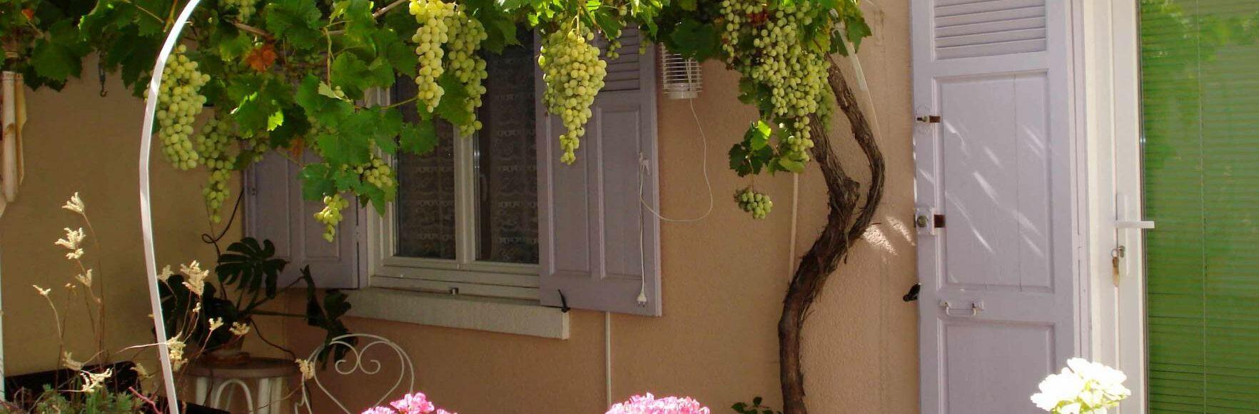 location de vacances à Toulon dans maisonnette provençale