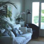 Appartement - T2 - 60 m² - 1er étage