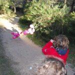 Les petits aventuriers de la forêt