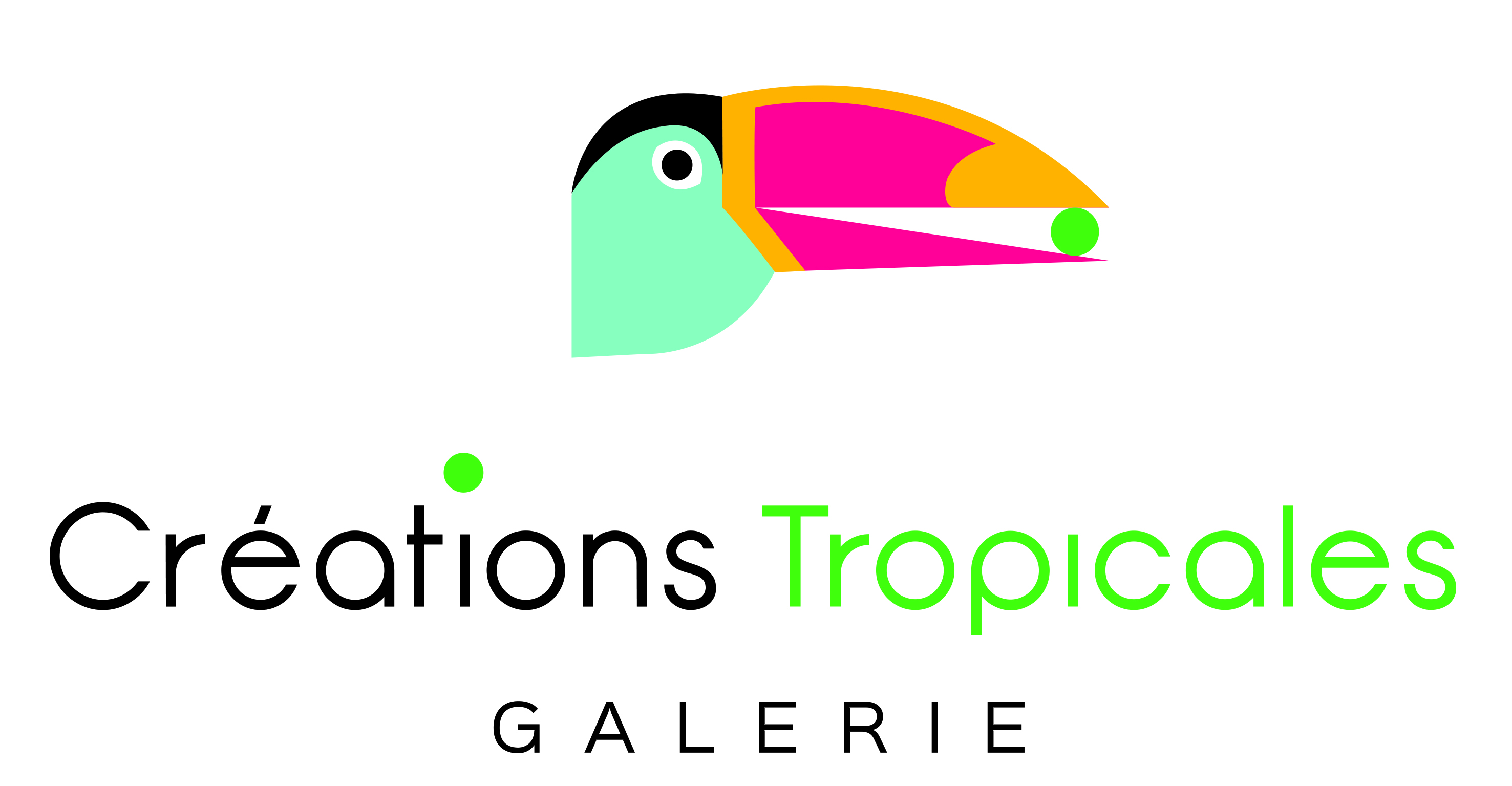 Artistes d couvrir galerie cr ations tropicales for Artiste creation