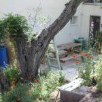 rousset-olivier