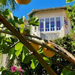 oranger-villa-presence