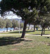 jardin public à Toulon